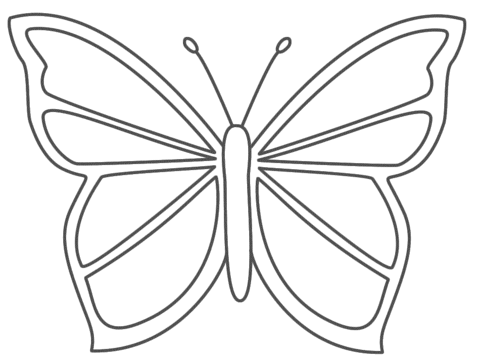 Butterfly Gif Colouring Tattoo Pictures to Pin on Pinterest