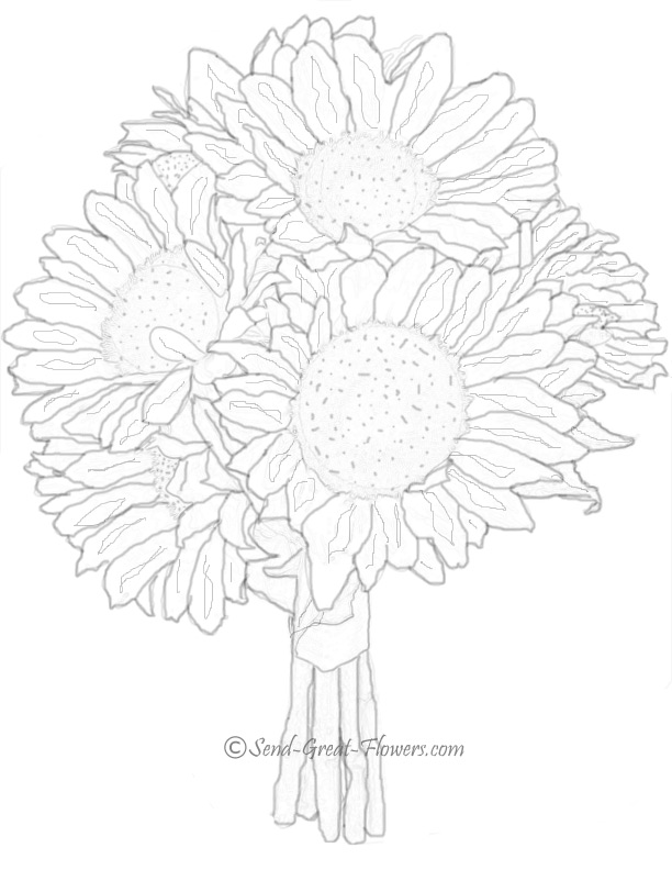 coloring pages sunflower | Maria Lombardic