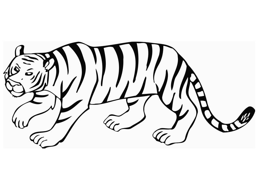 Pin Disegno Da Colorare Tigre Cat 10101 Do It on Pinterest