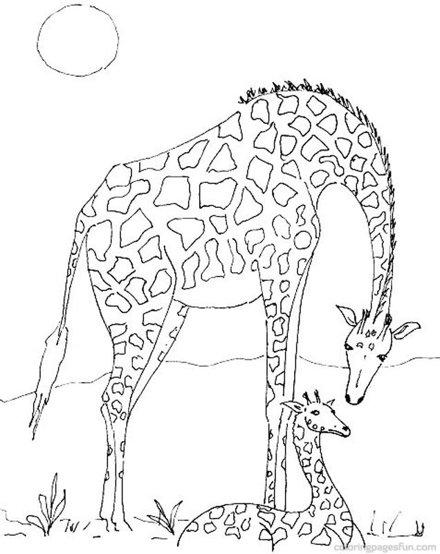 Giraffe Coloring Pages Page 3 Of 4 Free Printable Coloring
