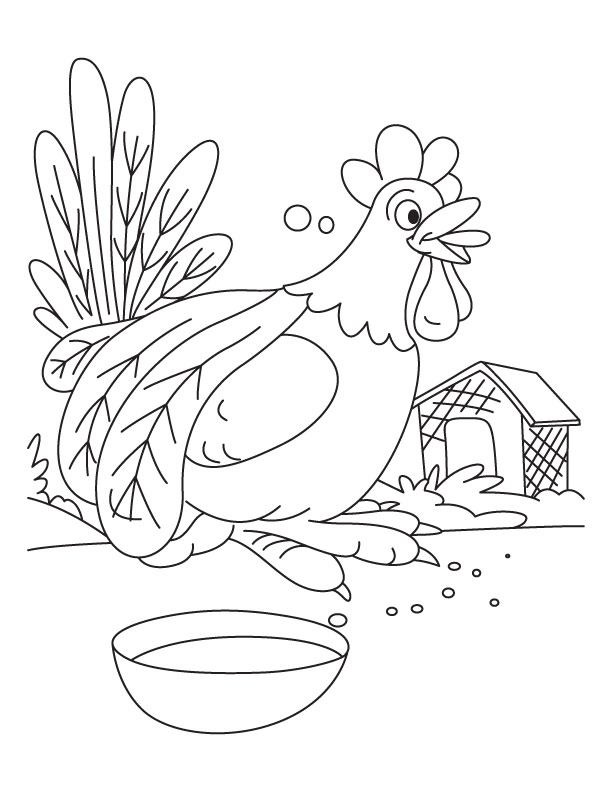 Do not disturb, Rooster having food coloring pages | Download Free ...