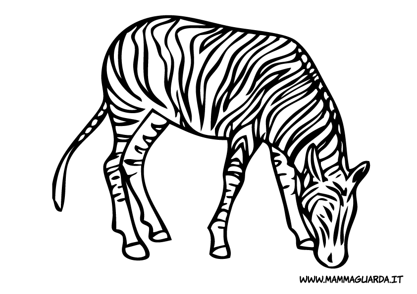 zebra disegno az colorare On zebra da colorare