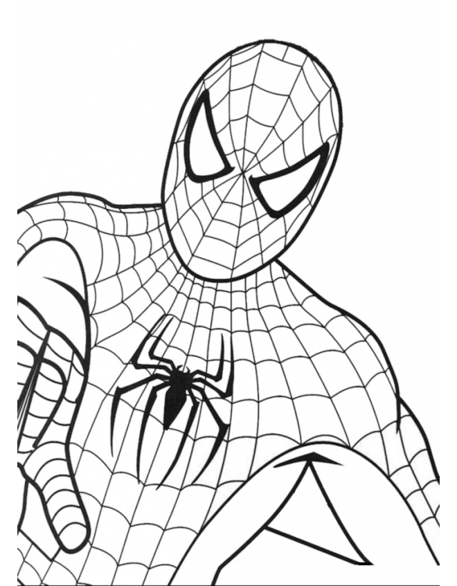 spiderman-da-colorare-660x847.jpg
