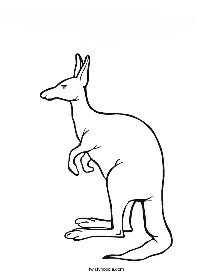 CANGURO Colouring Pages