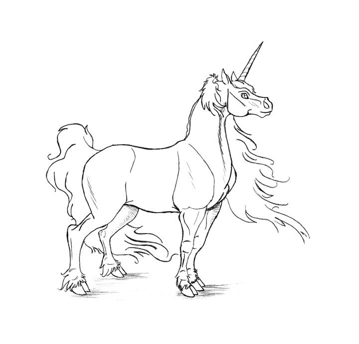 The Male Unicorn Coloring Page For Kids | Kids Coloring ...
